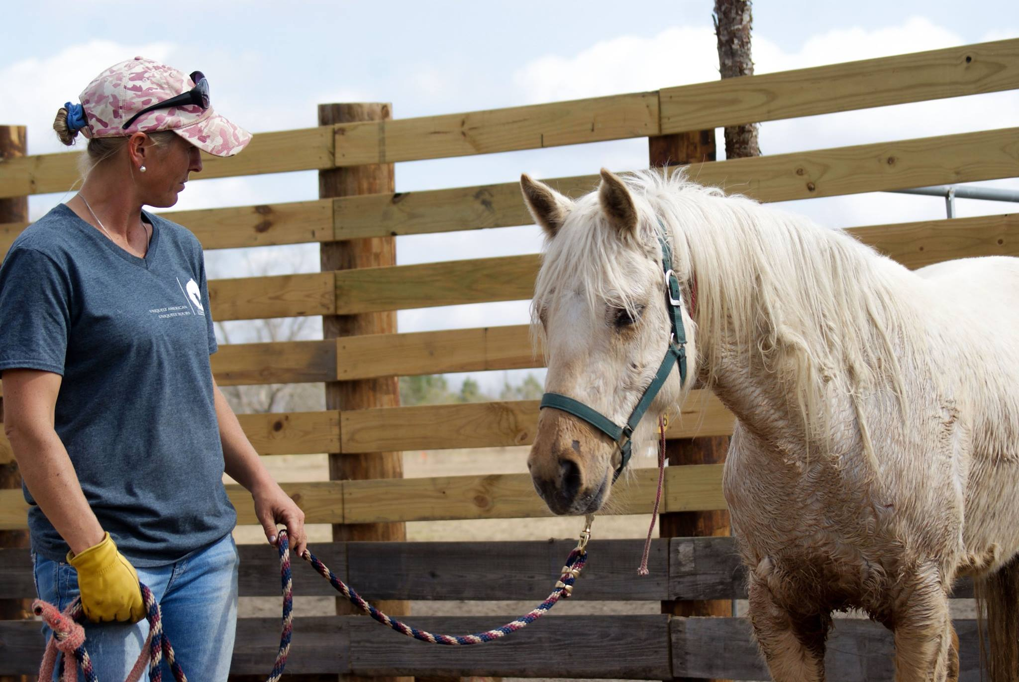 Sandra (Rackettown Mustangs), US-Trainerin Mustang Makeover Deutschland 2017