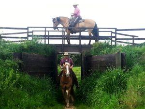 Die Jungs und ihre Pferde posen
