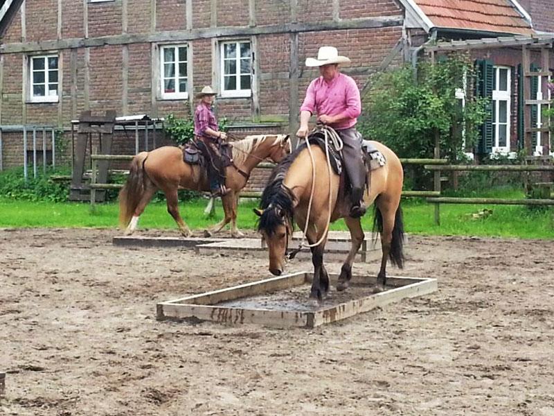 Die Jungs und ihre Pferde bei der Arbeit