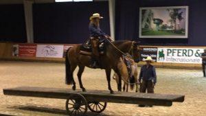Justine & Breedingstock Stute Dakota auf der Mega-Pferdewippe beim Mustang Makeover Aachen 2017