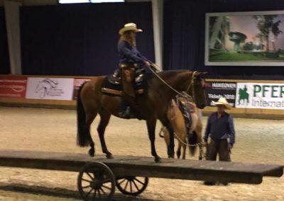Justine & Breedingstock Dakota  auf der Mega-Pferdewippe