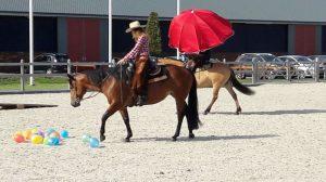 Horseman Days 2017 – wenn ich schon keinen Sonnenschirm hatte, dann wenigsten einen großen Hut …