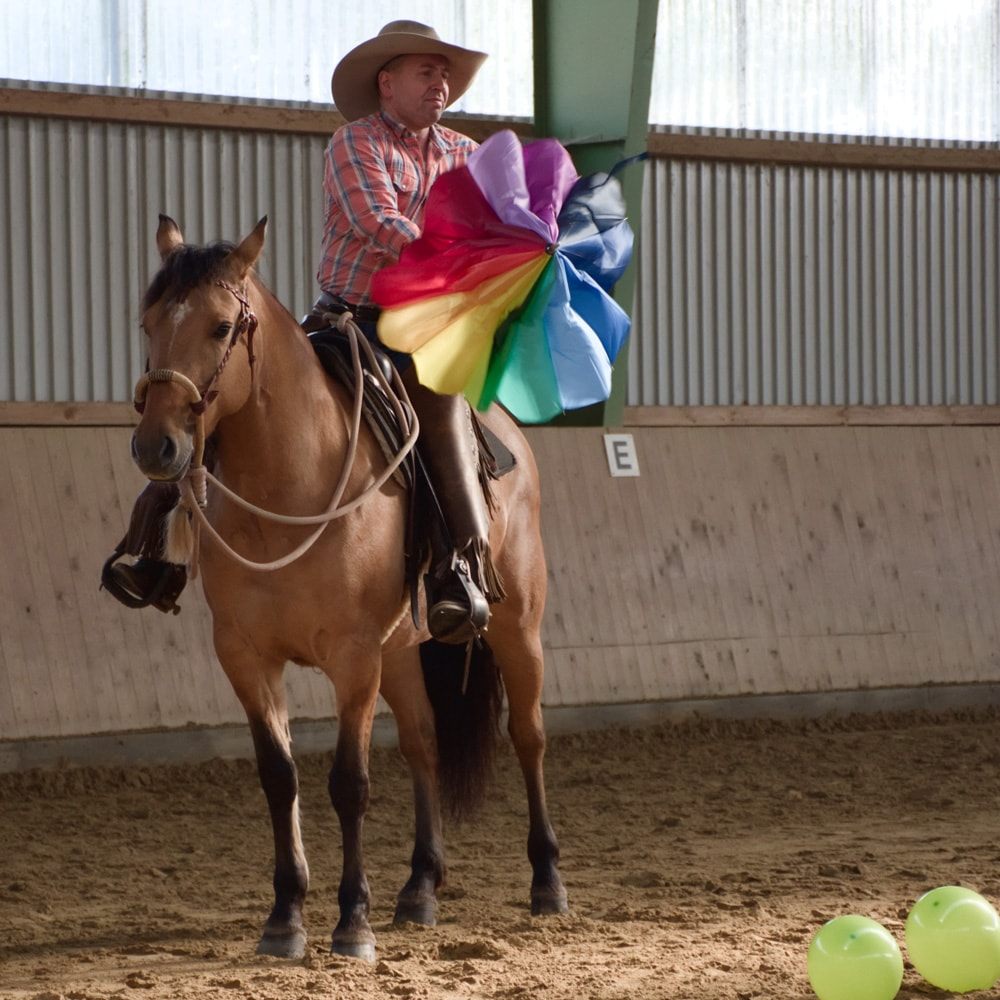 Martin Schmitz und Mustangstute Montana – Gelassenheit!