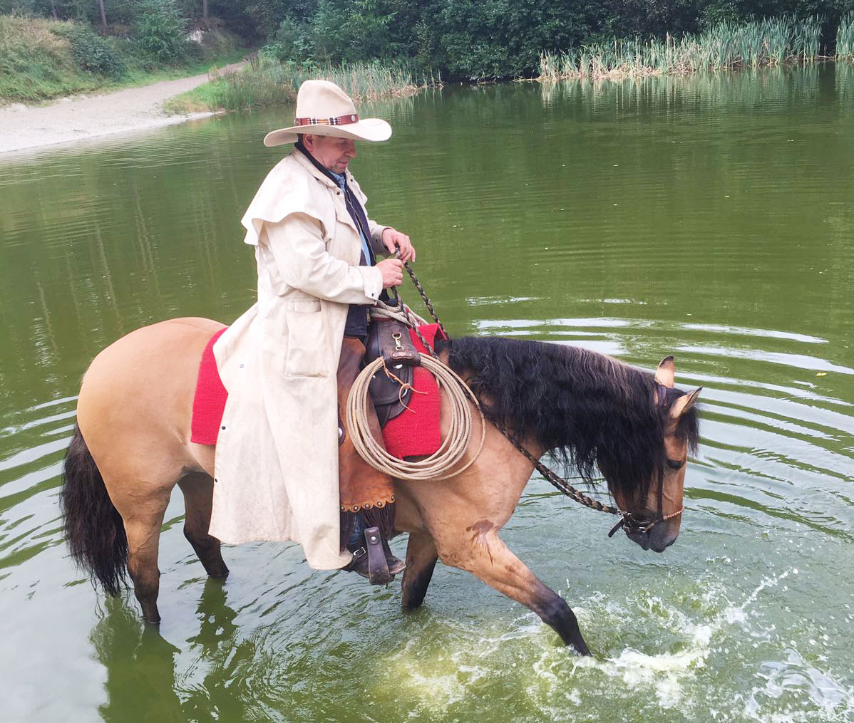 Montana (Kiger Mustang) im See