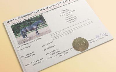 Gute Nachrichten für Suffield Mustang Besitzer