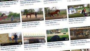 Videotagebücher der Trainer haben schon nach kürzester Zeit meist -zig tausende Klicks
